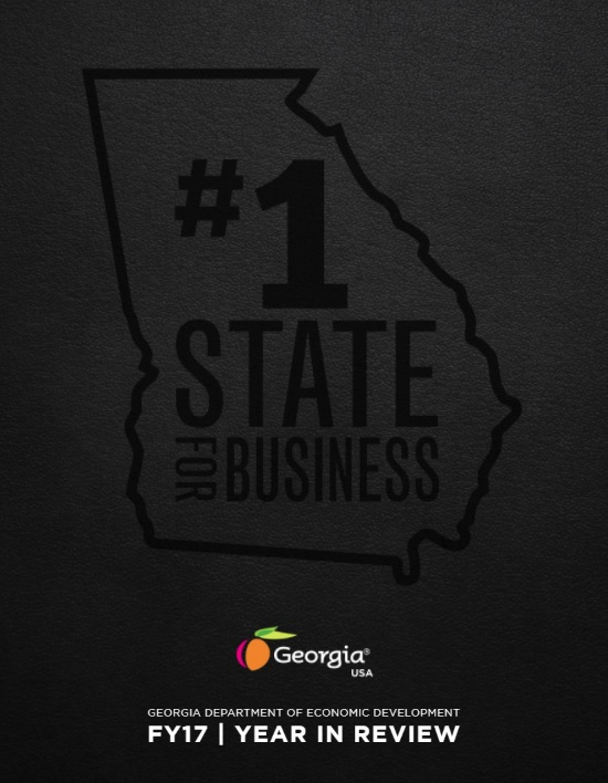 2017 Georgia Year In Review Brochure